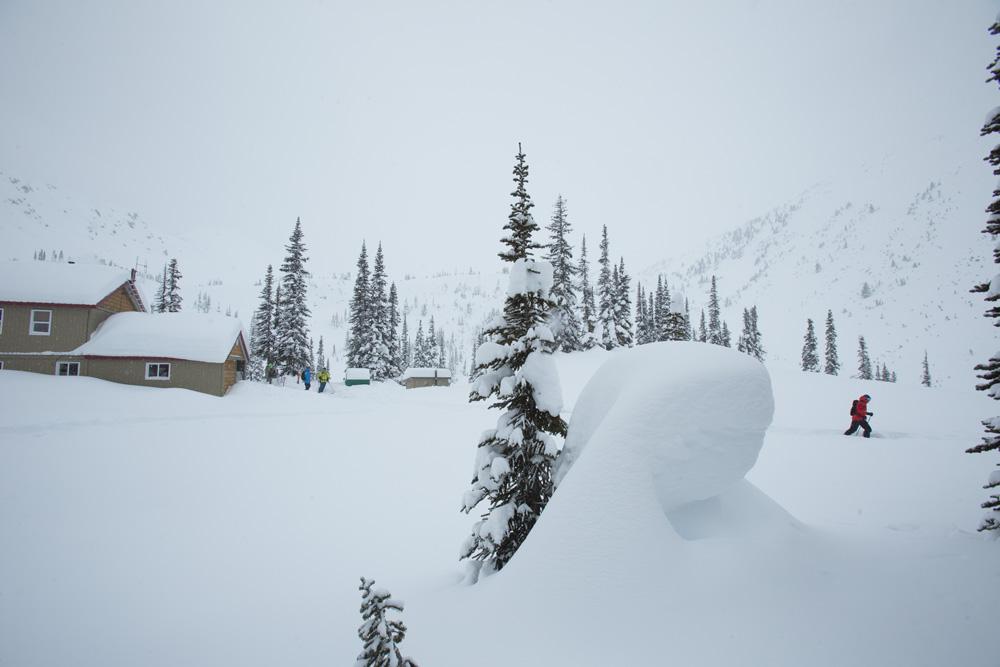 Austin Ross, Sunrise Lodge, Esplanade Range, BC, Canada photo:Adam Clark