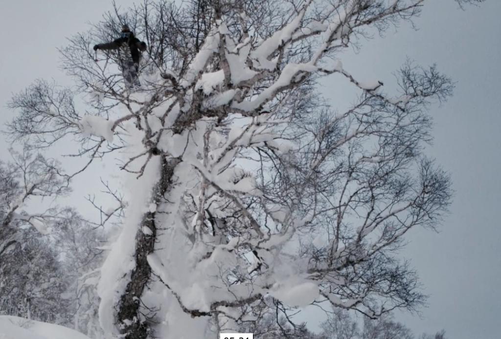 Screen Shot 2016-01-12 at 4.40.30 PM